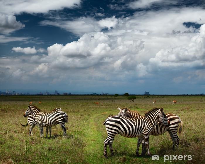 Nálepka Pixerstick Zebras - Témata