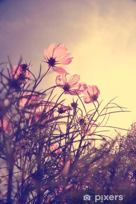 Vinilo para Nevera Flores del cosmos de la vendimia en el tiempo de suspensión -