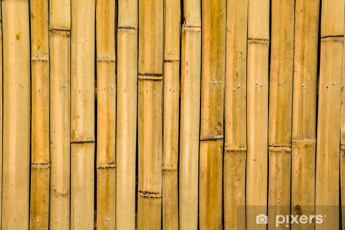 Naklejka Pixerstick Bambusa tekstury - Natura i dzicz