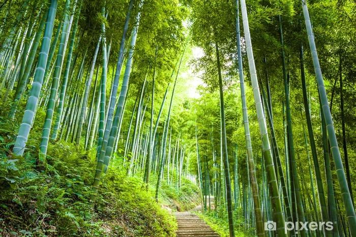 Sticker Pixerstick Forêt de bambous et une passerelle - Destin