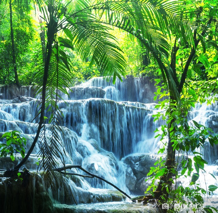 Waterfall in Mexico Vinyl Wall Mural - Themes