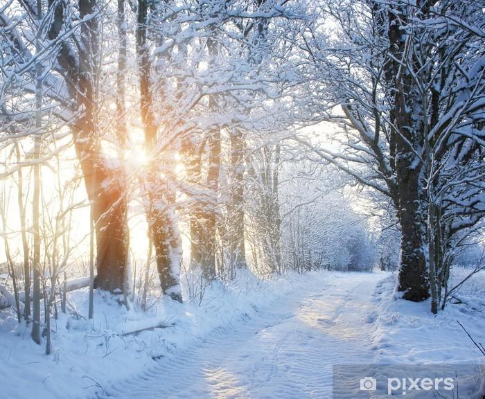 Fototapete Winter Strasse Mit Sonnenlicht Pixers Wir Leben Um
