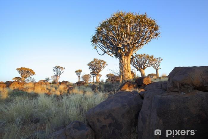 Fototapeta winylowa Szczytówki skały i drzewa w lesie drzew kołczan - Afryka
