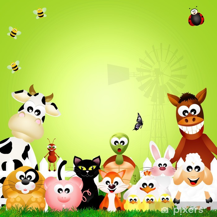 Farm animals Vinyl Wall Mural - Preschooler