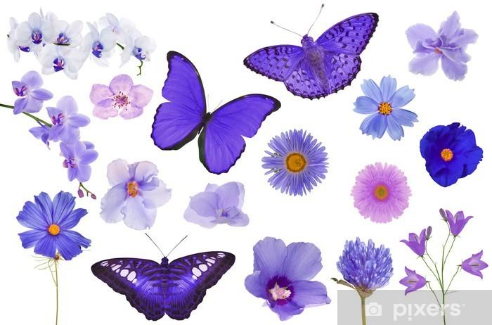 Fiori Color Viola.Carta Da Parati Set Di Farfalle Di Colore Viola E Fiori Isolati Su