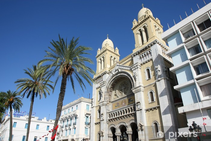 Vinylová fototapeta Cathedra svatého Vincence de Paul v Tunis - Vinylová fototapeta