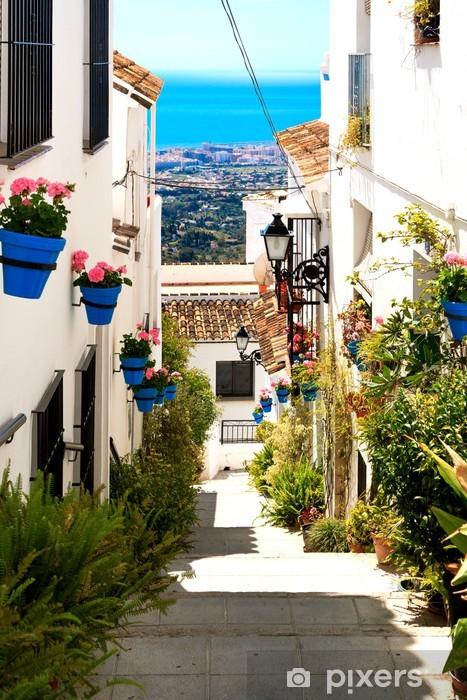 Vinyl Fotobehang Mooie straat met bloemen in de stad Mijas, Spanje - Thema's