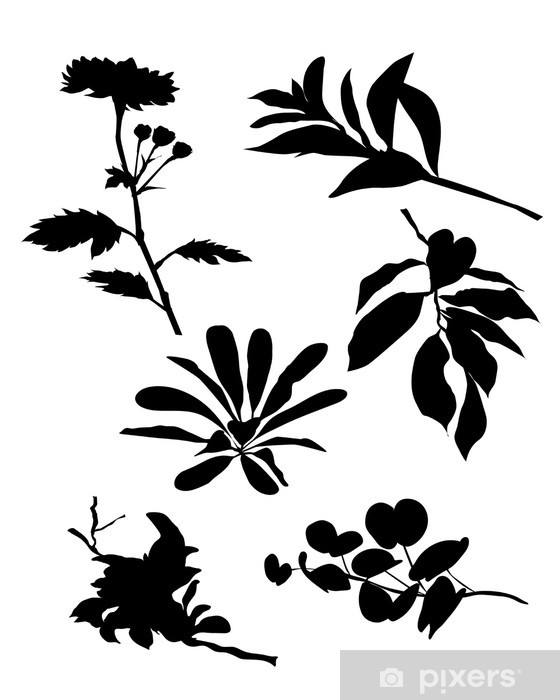 Leaves & flower silhouettes-vector Pixerstick Sticker - Trees