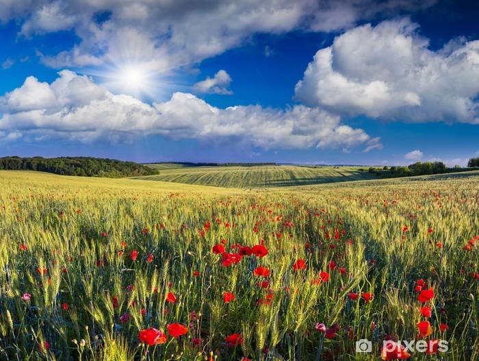 Papier peint vinyle Fleurs de pavot dans un champ de blé - Campagne