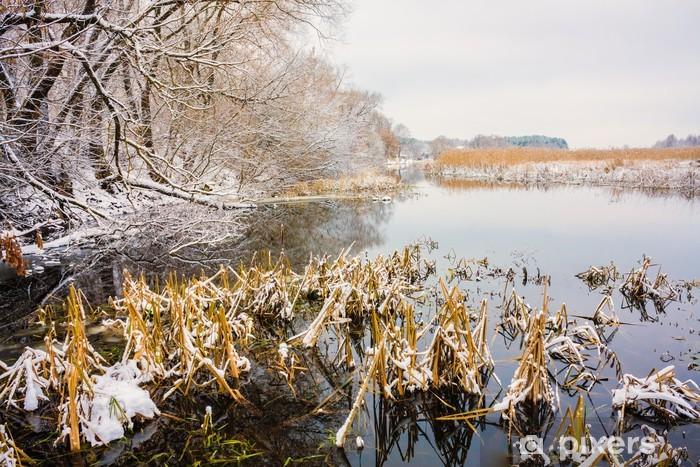 Vinyl-Fototapete Blick auf den Sumpf. Gras und Wasser. - Jahreszeiten
