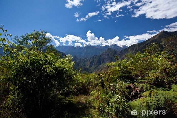 Carta da Parati in Vinile Mountain Trail - America