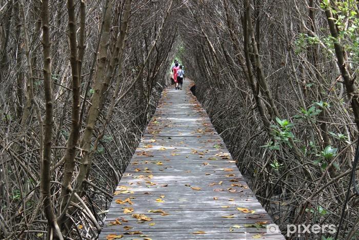 Vinil Duvar Resmi Mangrov ormanı -