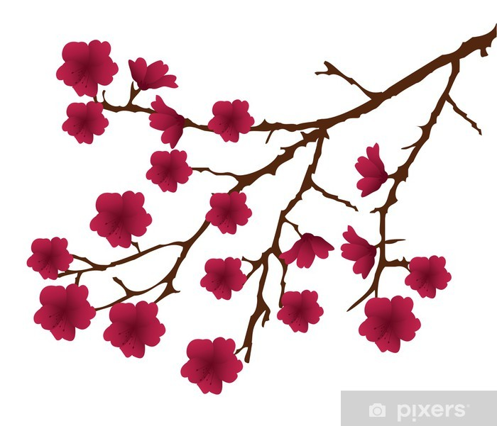 Poster Vektor Kirschblütenzweig mit roten Blumen - Stile