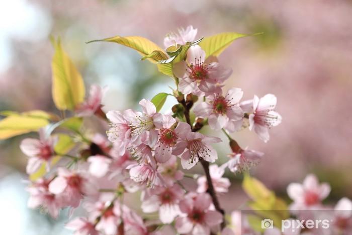 Naklejka Pixerstick Detal Sakura różowy - Kwiaty