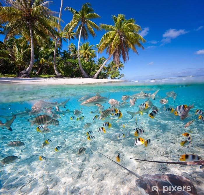 Tropical island Self-Adhesive Wall Mural - Fishes