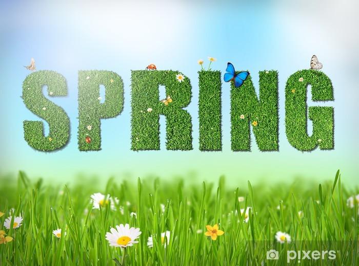 Fototapeta winylowa Wiosna słowo z trawy i kwiatów - Inne Inne