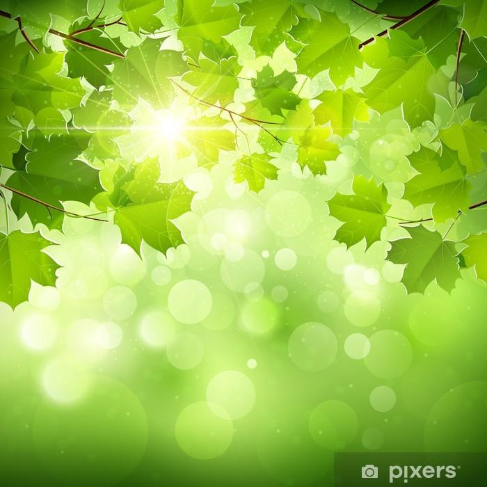 natural green background  vector wall mural  u2022 pixers u00ae  u2022 we live to change