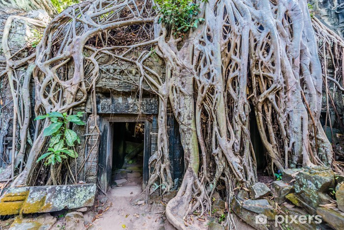 Naklejka Pixerstick Ta Prohm Angkor Wat w Kambodży - Azja