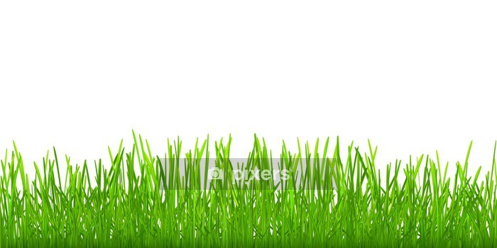 seamless green grass wall decal • pixers® • we live to change