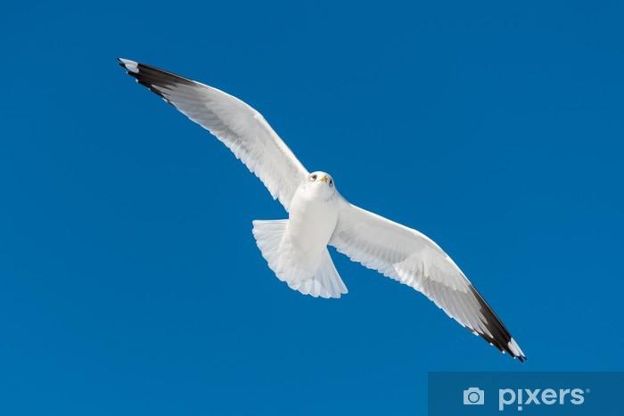 Sticker Pixerstick Un vol d'oiseaux blancs - Oiseaux