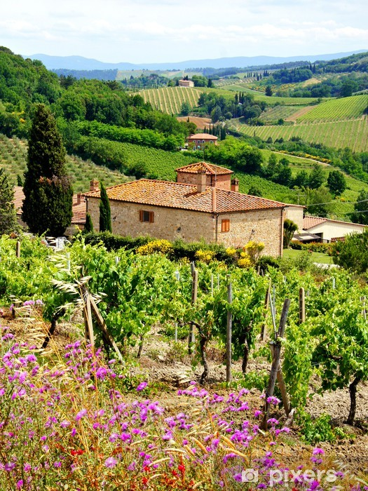 View through vineyards with stone house, Tuscany, Italy Pixerstick Sticker - Themes