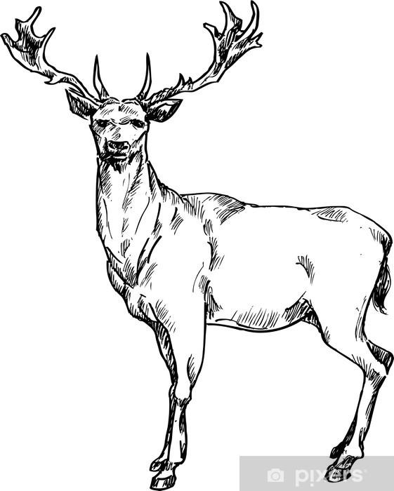 Fototapeta Rukou nakreslený jelen • Pixers® • Žijeme pro změnu bf06ced6fd