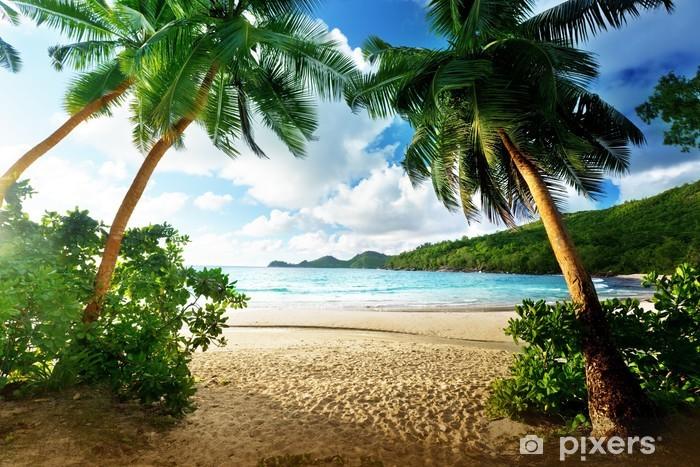 Vinilo Pixerstick Puesta de sol en la playa, la isla de Mahe, Seychelles - Palmeras