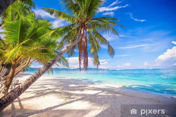 Fotomural Estándar Árbol de la palma de coco en la playa de arena blanca - Palmeras