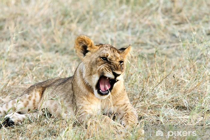 Papier peint vinyle Un bâillement bébé de lion - Thèmes