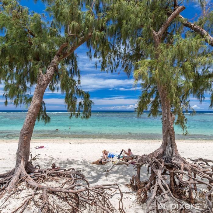 Fototapeta winylowa Pod drzewem filao, Saint-Paul, Reunion - Tematy