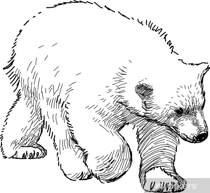 Poster Ourson polaire - Mammifères