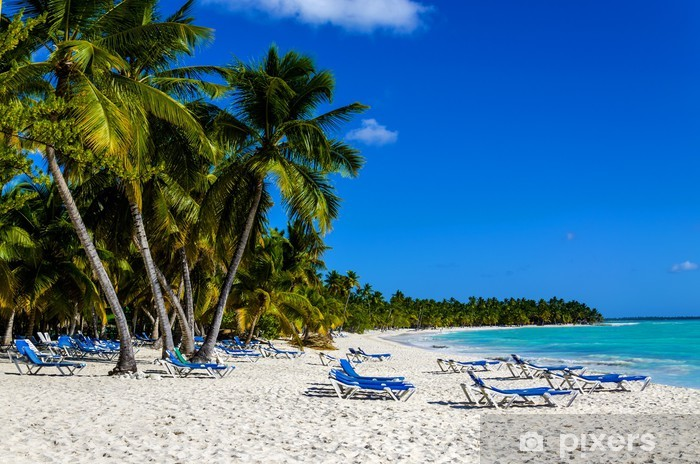 Exotic vacation in Dominican Republic. Palm trees, beach chairs Vinyl Wall Mural - Palm trees