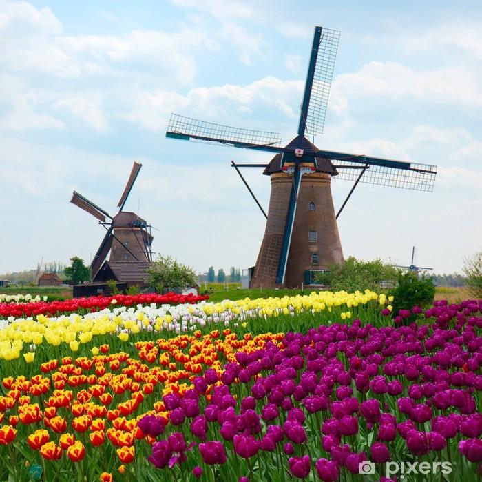 Vinyl Fotobehang Twee Nederlandse windmolens in tulpen veld - Nederland