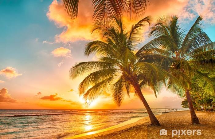 Kendinden Yapışkanlı Duvar Resmi Barbados -