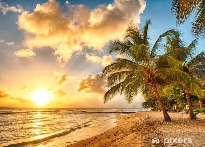 Carta da Parati in Vinile Barbados -