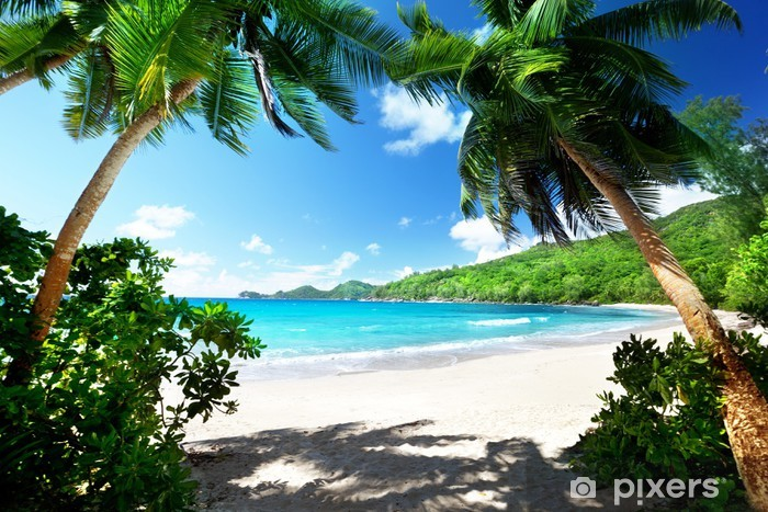 beach, Mahe island, Seychelles Pixerstick Sticker - Palm trees