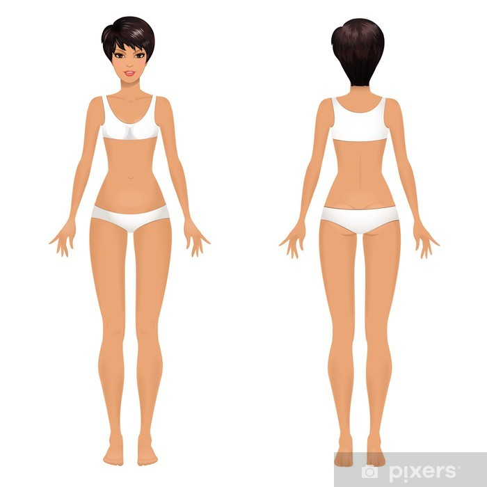 Female Body Template Front And Back Vinyl Wall Mural Lifestyle Gt Care