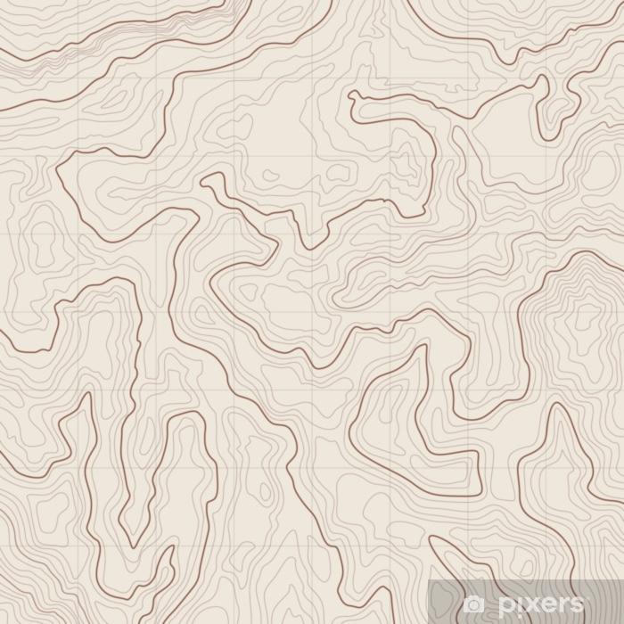 Sticker Pixerstick Fond de carte topographique - Voyages