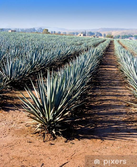 Pixerstick Sticker Lanscape tequila guadalajara - Vakantie