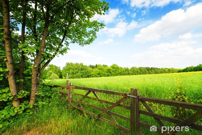 Fence in the green field under blue sky Pixerstick Sticker - Themes