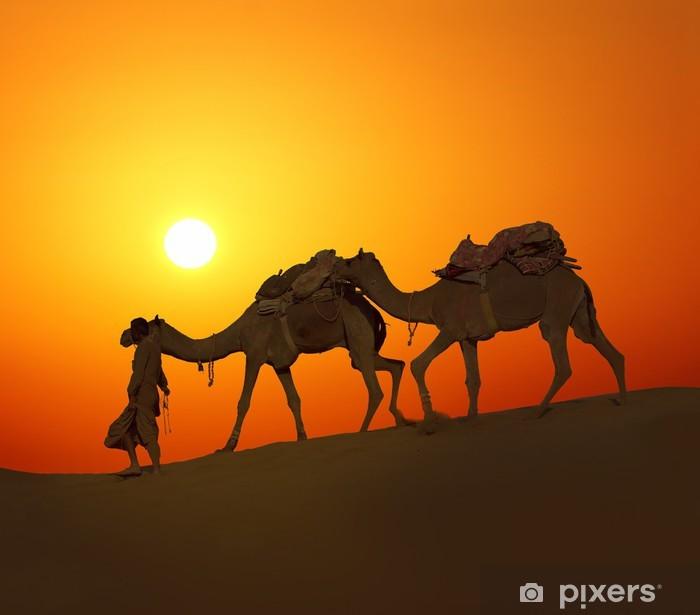 Papier peint vinyle Chameaux cameleerand - silhouette contre le coucher du soleil - Asie