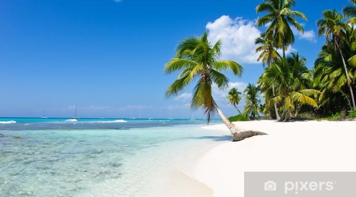 Papier peint vinyle Tropical sea - Eau