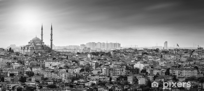 Istanbul Mosque with residential area in black and white Vinyl Wall Mural - The Middle East