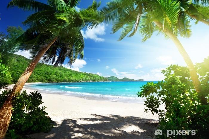Fototapeta winylowa Na plaży, Mahe Island, Seszele - Palmy