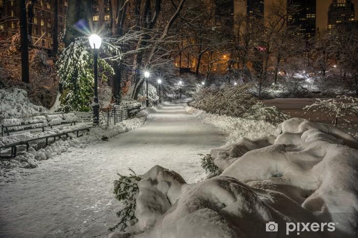 Vinilo Pixerstick Central Park, Nueva York - América