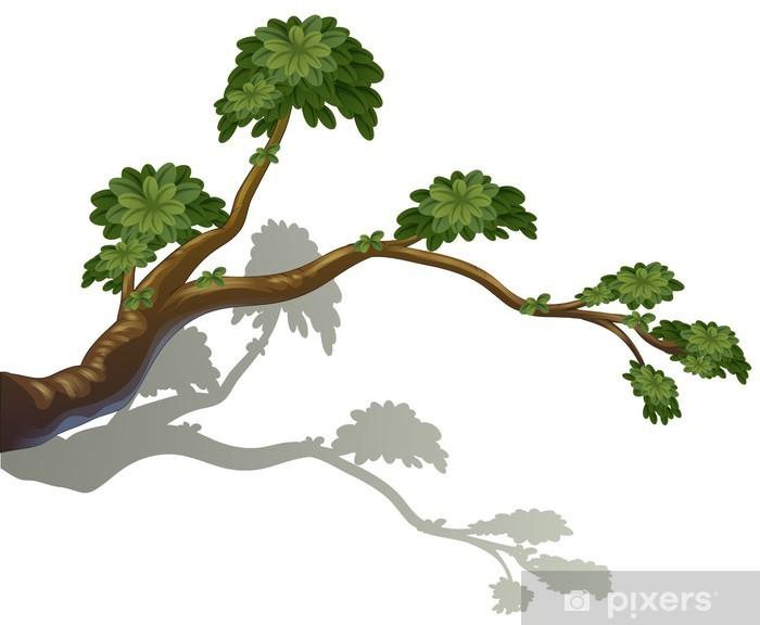 Vinilo Pixerstick Una rama de un árbol - Árboles