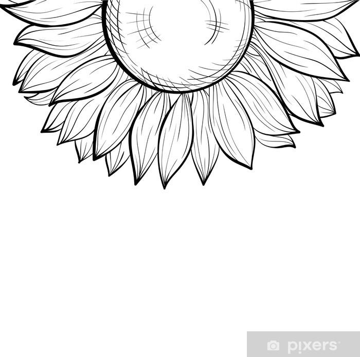 Vinilo Pixerstick Fondo blanco y negro, frontera floral del girasol ...