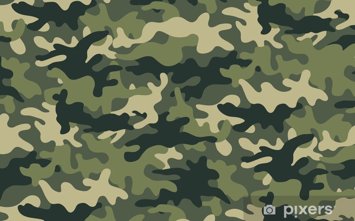 Camouflage Vinyl Wall Mural Backgrounds