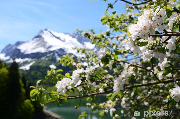 Papier peint vinyle Printemps en Suisse - Montagne