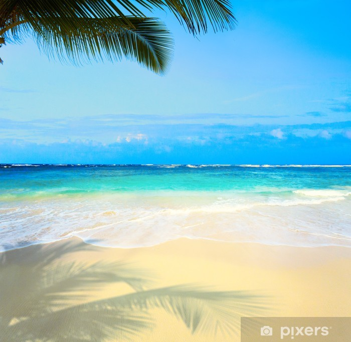 Art beautiful untouched tropical sea beach Framed Poster - Palm trees